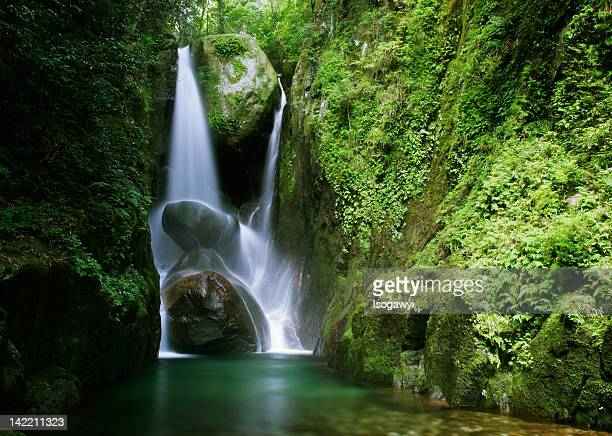 inyoh falls - isogawyi stock pictures, royalty-free photos & images
