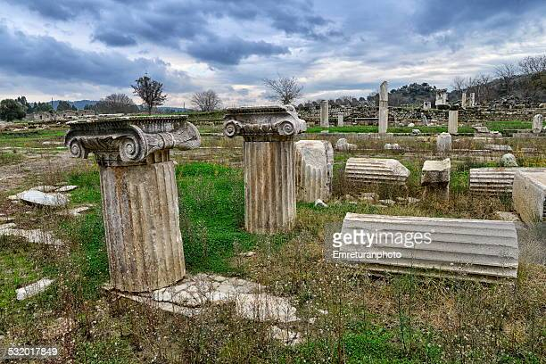 ionic order coloumns in magnesia,aydin,turkey - emreturanphoto stock pictures, royalty-free photos & images