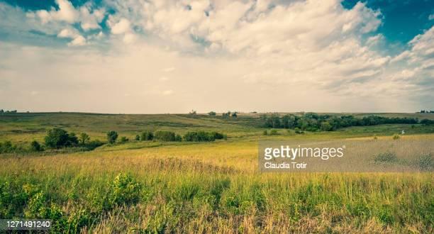 iowa prairie landscape - 平地 ストックフォトと画像