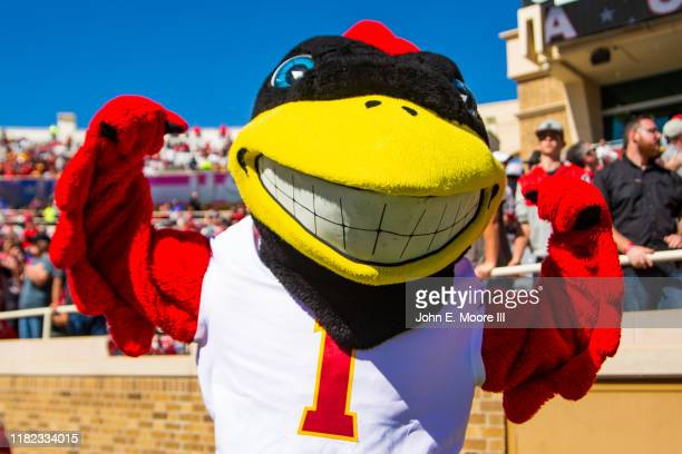 Iowa State Cyclones mascot Cy the Cardinal flexes during the second half of the college football game against the Texas Tech Red Raiders on October...