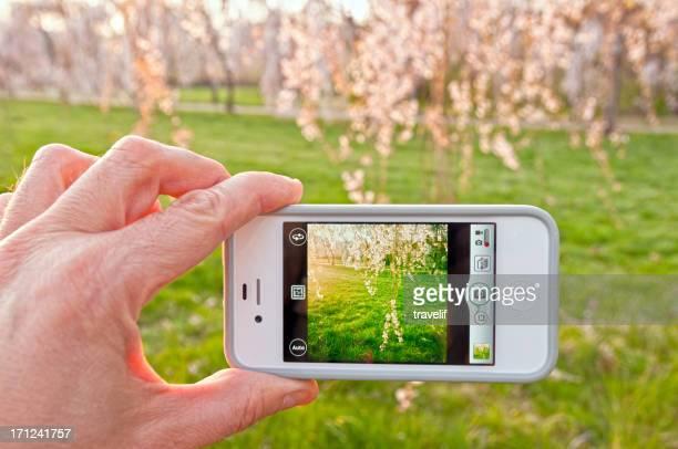 iPhone のカメラ写真のアプリ