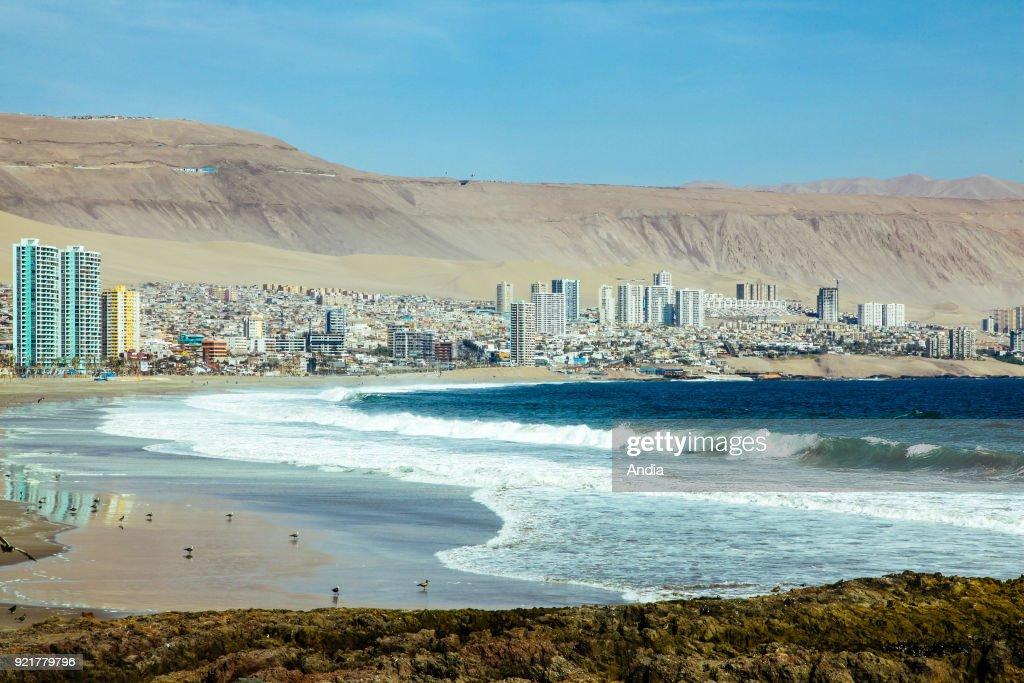 Iquique, beach. : News Photo