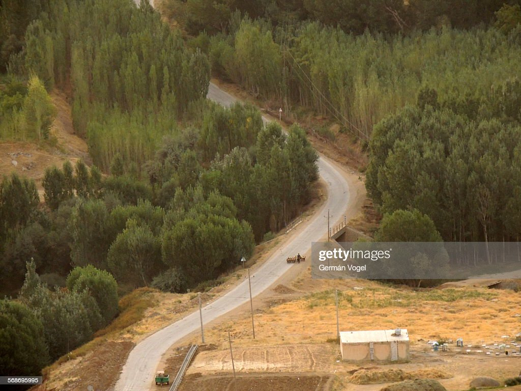 Iran rural road curve walked by shepherd and sheep : Stock Photo