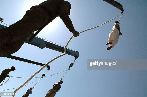 Iranian criminals hang limply from the nooses during public execution in the southern city of Shiraz 950 kms south of Tehran 05 September 2007 large...