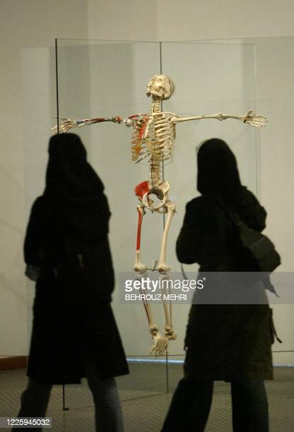 Iranian students look at the Resurrection work by British artist Damien Hirst at the 20th Century British Sculpture exhibition in Tehran's museum of...