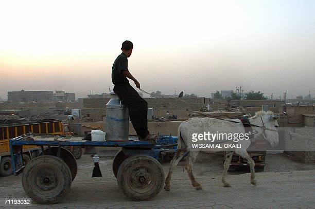 An Iraqi boy rides a donkeycart in the area of alFudailiyah northeast of Baghdad in the early hours of 15 May 2006 Scores of Iraqi Shepherds live in...