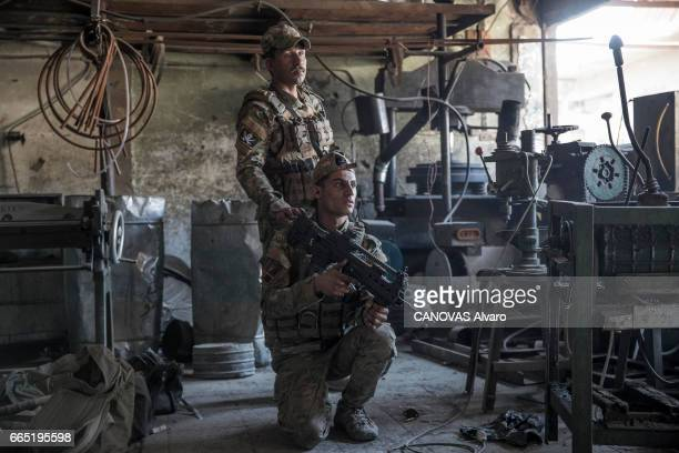 Iraq the battle of Mosul with the men of the Scorpion battalion of the ERD the Iraqi elite troops captain Ali on March 27 2017