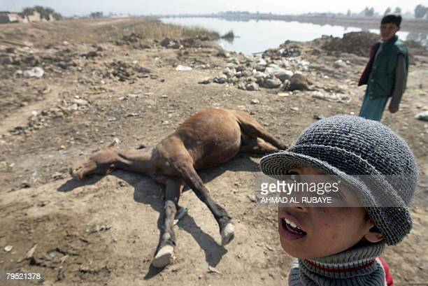 Iraqi boys walk past the carcass of a horse thrown near an open sewage pool in the HaiTareq area on the outskirts of the impoverished district of...