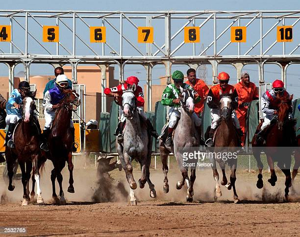 Iraqi jockeys and their horses break from the start during the third race of the September 24 2003 race lineup at the Abu Ghraib horse racing track...