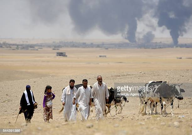 Iraqi people who fled from their villages due to the clashes, go to Dibege Tent Camp in Mosul's Mahmur district as Mosul rescue operation from Daesh...
