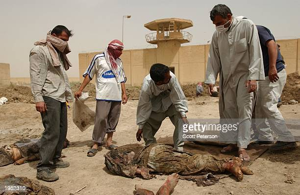 Iraqis dig up a mass grave with 13 recently buried bodies in the compound of Iraq's notorious Abu Ghraib prison April 25 2003 in Abu Ghraib Iraq...