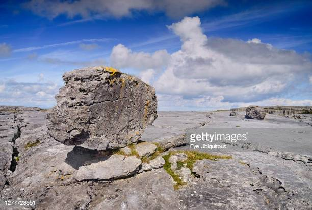 Ireland County Clare The Burren A single weathered rock sits on typical limestone landscape