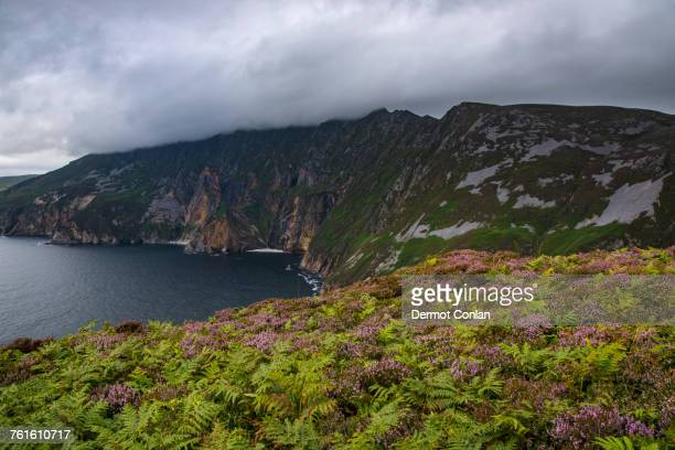 Ireland, County Donegal, Slieve League cliffs by Donegal bay