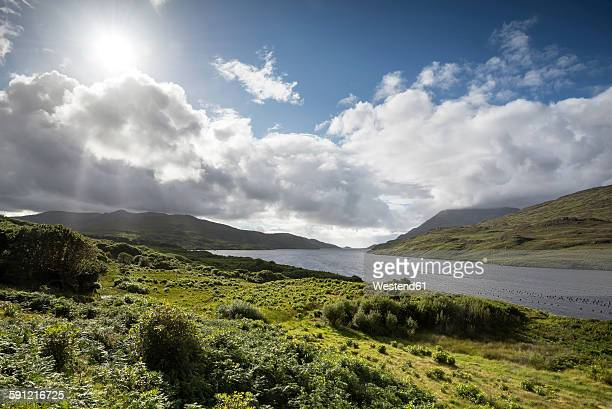 ireland, county galway, connemara, killary harbour - county galway stock pictures, royalty-free photos & images