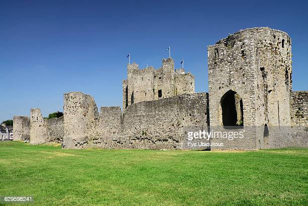 Ireland County Meath Trim Castle