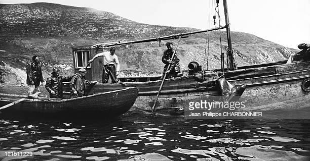 Ireland County Of Mayo Achill Island Basking Shark Fishing In 1961