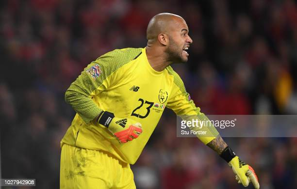 Ireland goalkeeper Darren Randolph in action during the UEFA Nations League B group four match between Wales and Republic of Ireland at Cardiff City...