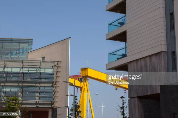 Ireland, North, Belfast, Titanic Quarter, Modern apartment buildings with Harland and Wolff cranes in the background.