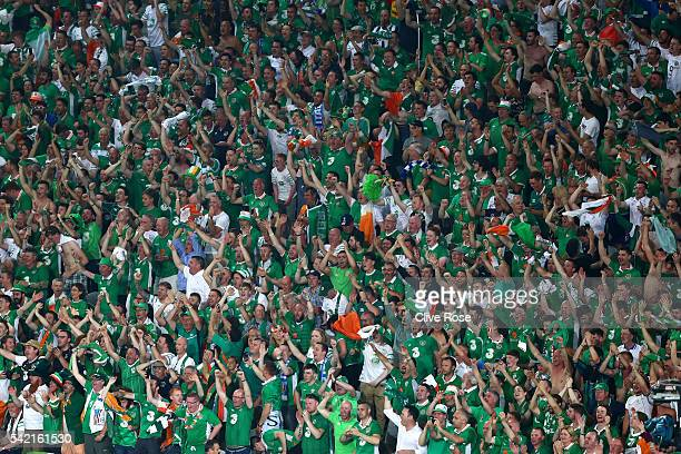 Ireland supporters celebrate after their team's first goal during the UEFA EURO 2016 Group E match between Italy and Republic of Ireland at Stade...