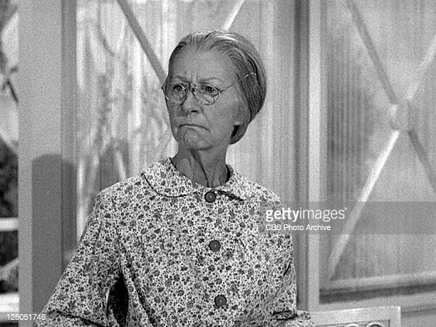 Irene Ryan as Daisy Moses in THE BEVERLY HILLBILLIES episode HairRaising Holiday Original airdate October 2 1963 Image is a frame grab