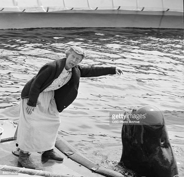 Irene Ryan as Granny reacts to a whale surfacing out of the water in The Beverly Hillbillies episode 'Back to Marineland' 1964