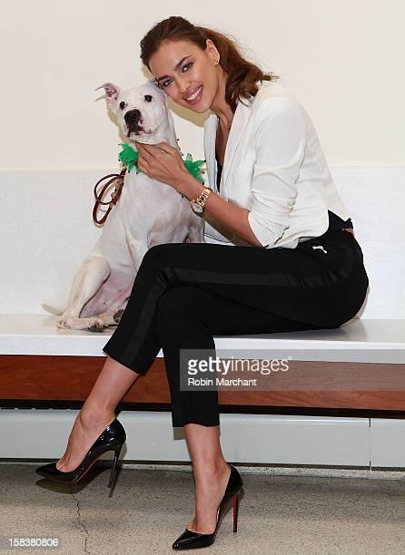 Irina Shayk spreads holiday cheer at ASPCA Adoption Center on December 14 2012 in New York City
