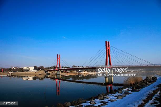 iris bridge - fukui prefecture stock photos and pictures