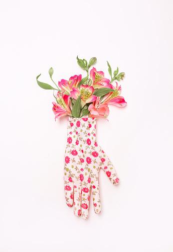 Iris flowers mitten glove decorated garden white 1150720434