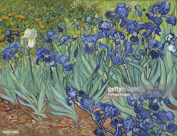 Irises 1889 Found in the collection of J Paul Getty Museum Los Angeles Artist Gogh Vincent van
