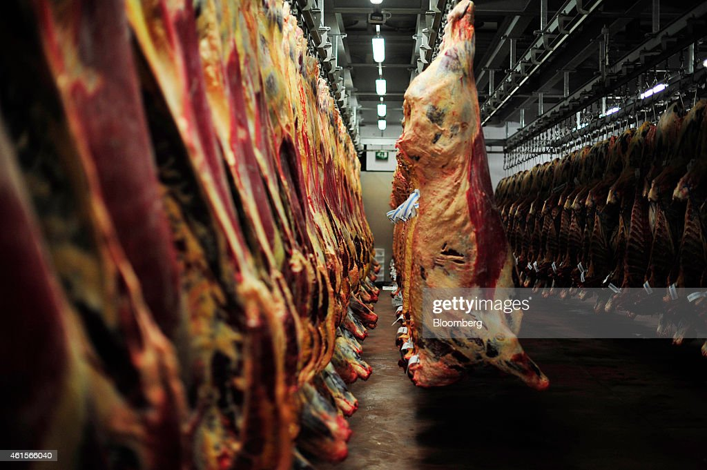 Irish beef carcasses hang in a cold storage room ahead of processing at ABP Foods Groupu0027s & Beef Processing At An ABP Foods Group Meat Plant As U.S. Lifts Irish ...
