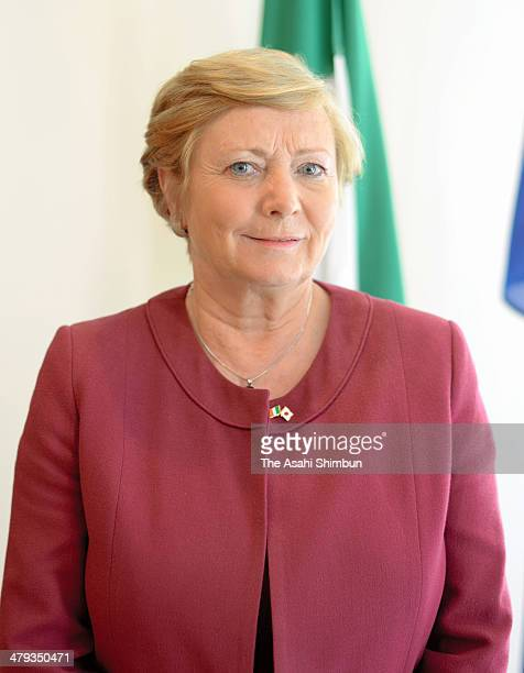 Irish Children and Youth Affairs Minister Frances Fitzgerald poses for photographs during the Asahi Shimbun interview on March 17 2014 in Tokyo Japan
