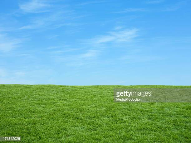 irish fields - grass picture stock pictures, royalty-free photos & images