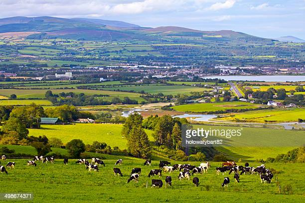 irish hills - county waterford ireland stock pictures, royalty-free photos & images