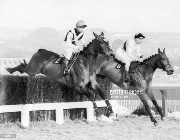 Irish jockey Pat Taaffe on Arkle on his way to winning the Cheltenham Gold Cup 11th March 1965