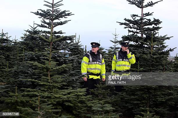 Irish police officers James O'Donoghue and Daragh McAvoy patrol a Christmas tree farm in Wicklow south of Dublin on December 10 2015 Fed up with...