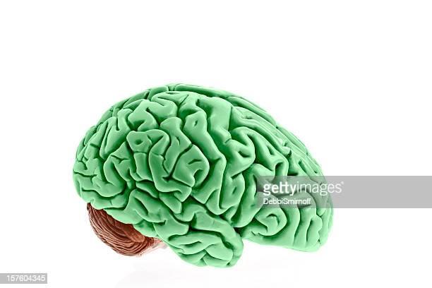 アイルランドの脳年間リサイクル賞 - 実物大 ストックフォトと画像
