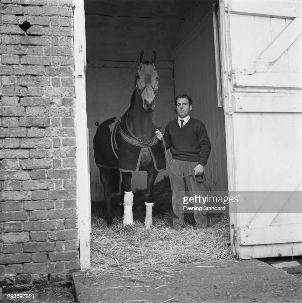 Irish thoroughbred racehorse Arkle recovers from a fracture sustained during a race the previous month, UK, 7th January 1967.