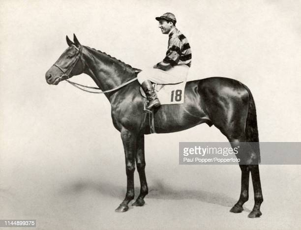 Irishbred and Englishtrained thoroughbred racehorse Tulyar sired by Tehran out of Neocracy owned by HH Aga Khan III and ridden by jockey Charlie...