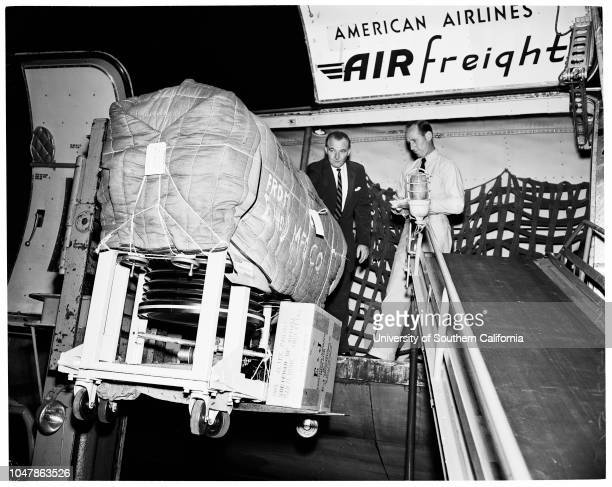 Iron Lung emergency 1956 Kim Hallamore Keith Gresser Supplementay material reads 'From News Bureau Pan American Raw neg Pls develop A frantic appeal...