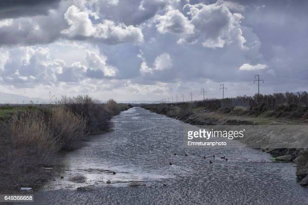 irrigation canal in the bird reserve. - emreturanphoto stock pictures, royalty-free photos & images