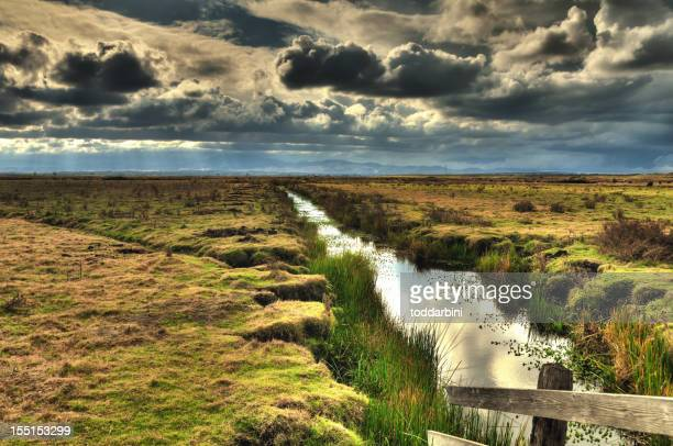 Irrigation Canal on a Stormy Day (HDR)