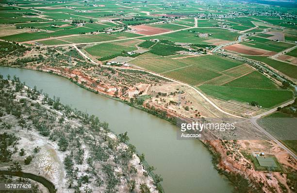 Irrigation degradation on the Murray River causing serious water quality problems Murray River near Mildura Victoria Australia