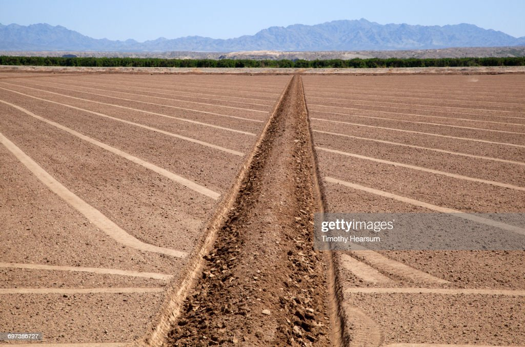 Irrigation ditch; plowed field ready for planting : Stock Photo