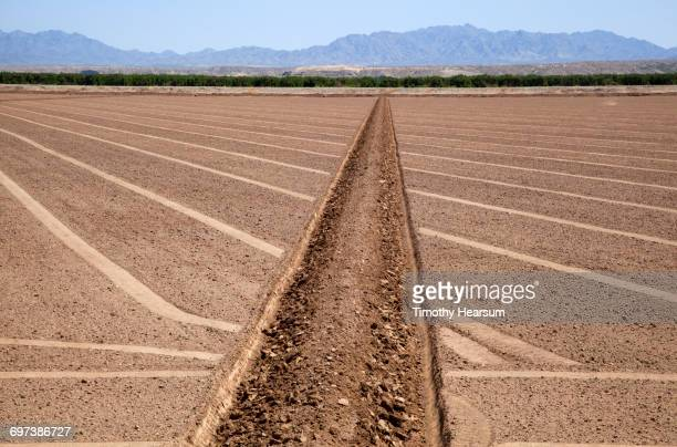 irrigation ditch; plowed field ready for planting - blythe brown stock pictures, royalty-free photos & images