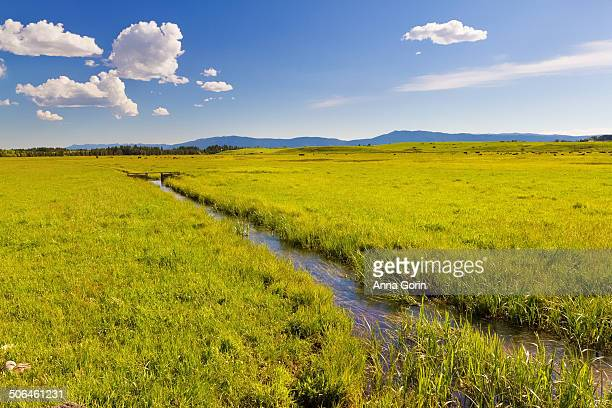 Irrigation ditch through meadow in McCall, Idaho