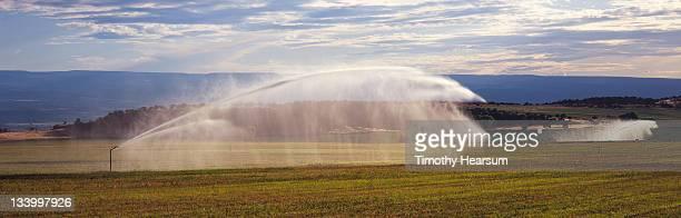 irrigation of pasture with mountains, sky beyond - timothy hearsum fotografías e imágenes de stock
