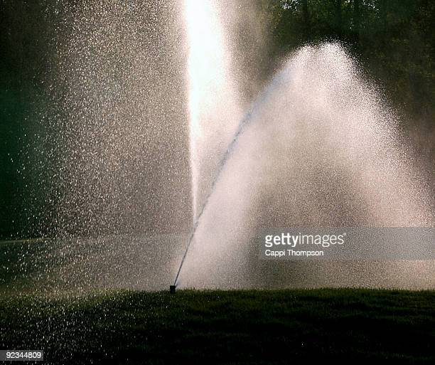 Irrigation spray