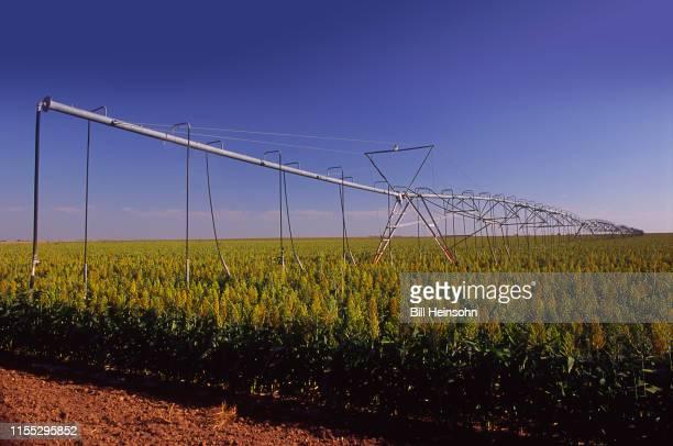 irrigation system in the panhandle - arlington texas - fotografias e filmes do acervo