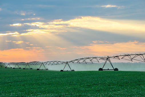Irrigation system watering agricultural fields - gettyimageskorea