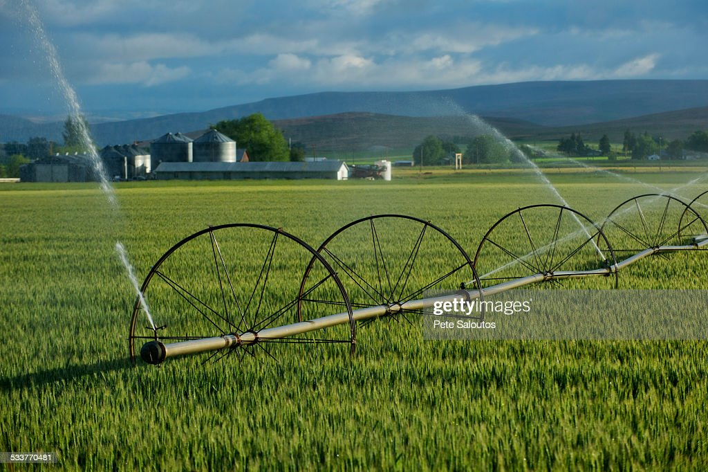 Irrigation system watering crops on farm field : Foto stock